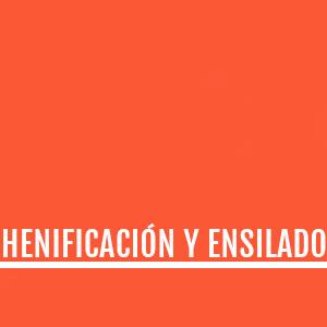 HENIFICADO Y ENSILADO